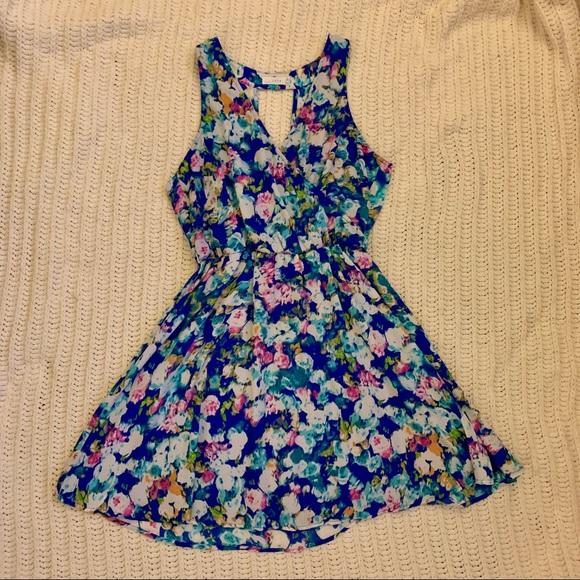Lush floral skater dress